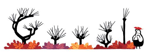 autumn google