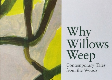 why-willows